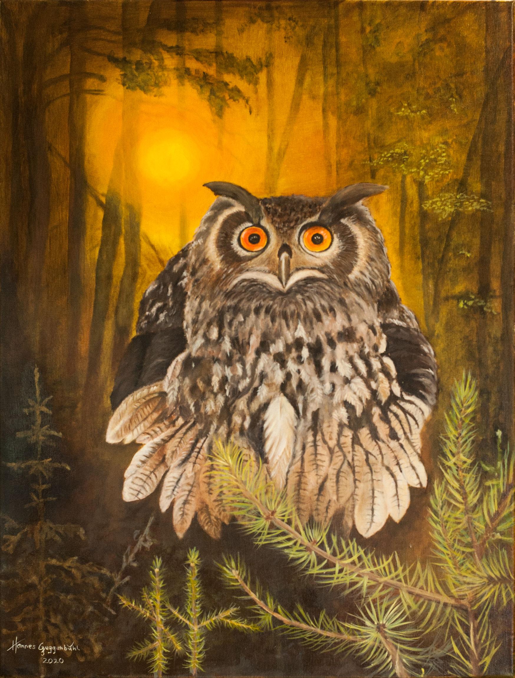 Uhu - Eule - OWL