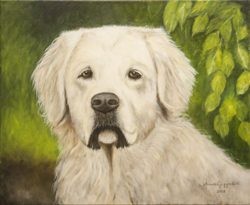 Hund Marlow